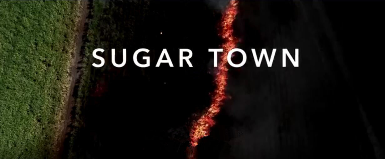 investigation discovery sugar town